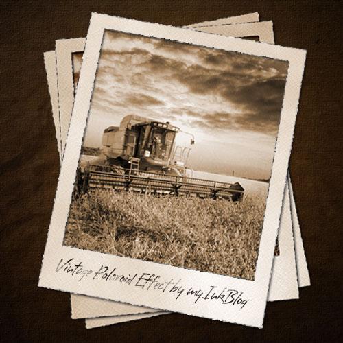 Polaroid Template | playbestonlinegames |Old Polaroid Photoshop
