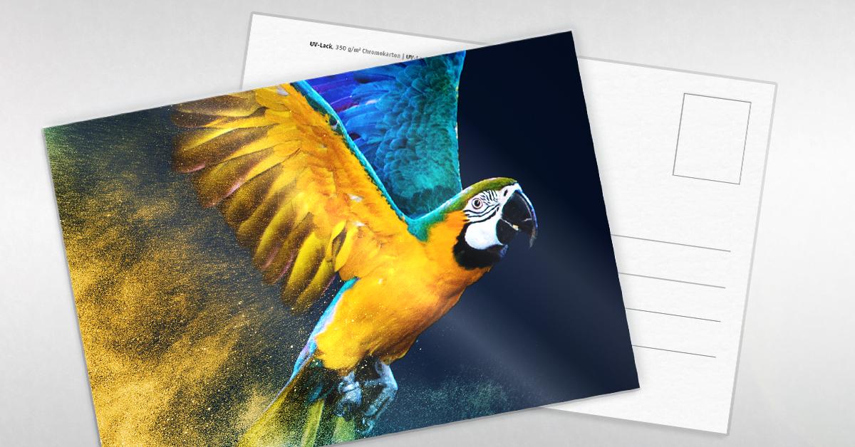 Postkarte mit UV-Lack versiegelt und veredelt